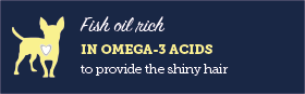 AAA Fish oil rich in omega-3 acids