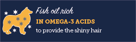 AAA Fish oil rich in omega-3 acids mediu