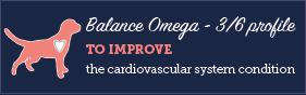 AAA Balance Omega 3/6 profile large